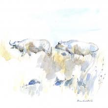 Buffalo and Guineafowl © Alison Nicholls