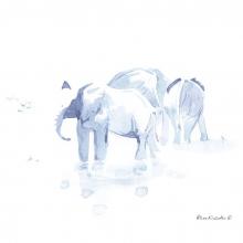 Elephants at Water III © Alison Nicholls