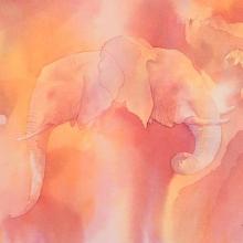 Elephant! Tembo! © Alison Nicholls