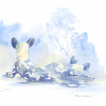 Dogs in Blue Field Sketch by Alison Nicholls ©