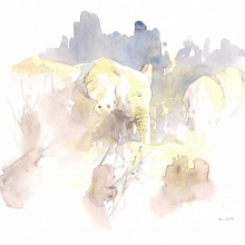 Elephants in Brown Field Sketch by Alison Nicholls ©
