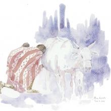 Mothers Milk Field Sketch © Alison Nicholls
