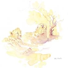 Restful Field Sketch © Alison Nicholls