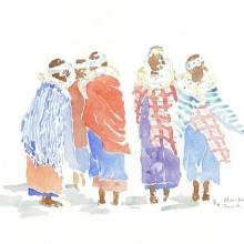 Shimmer and Shukas Field Sketch © Alison Nicholls