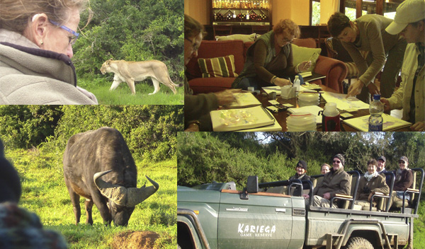 2015 Africa Geographic Art Safari in Kariega Game Reserve, South Africa, with Artist Alison Nicholls