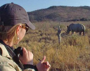 Art Safari, Africa Geographic, Alison Nicholls