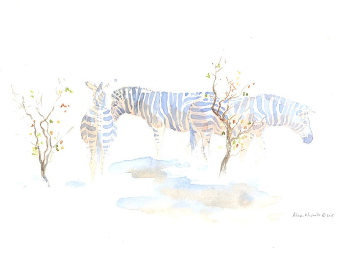 A herd of Zebra in Mopane Field Sketch by Alison Nicholls