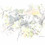Bull Elephants © Alison Nicholls