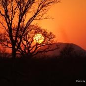 Sunset, Madikwe Game Reserve
