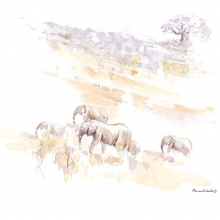 Elephants on the Move by Alison Nicholls©