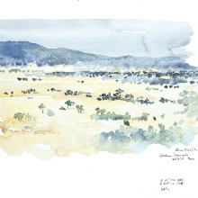 Serengeti by Alison Nicholls
