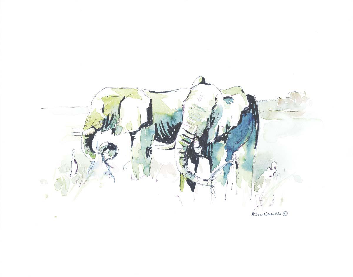 Elephants and Egrets © Alison Nicholls