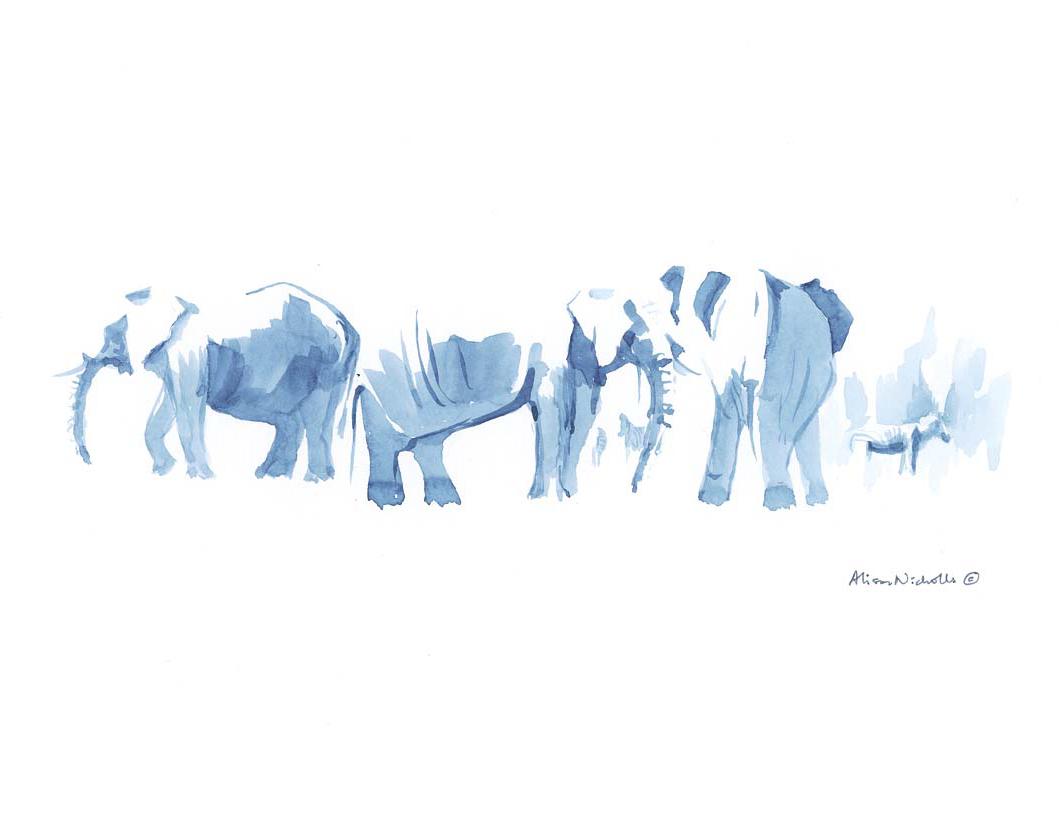 Elephants at Water IV © Alison Nicholls
