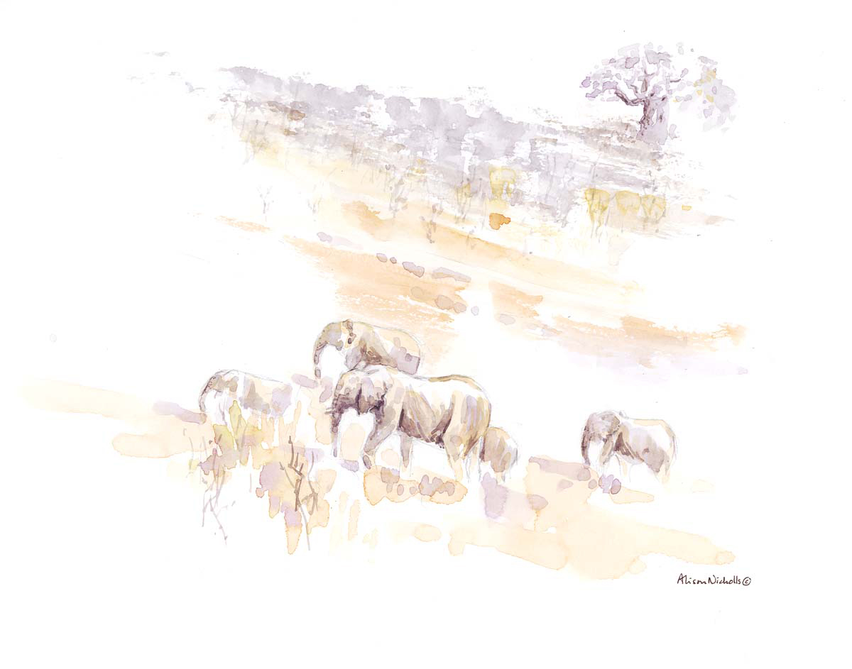 Elephants on the Move by Alison Nicholls ©