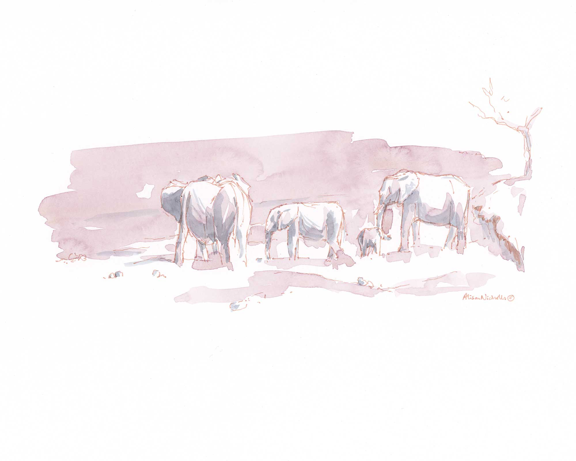 Elephants in Pink and Gray © Alison Nicholls