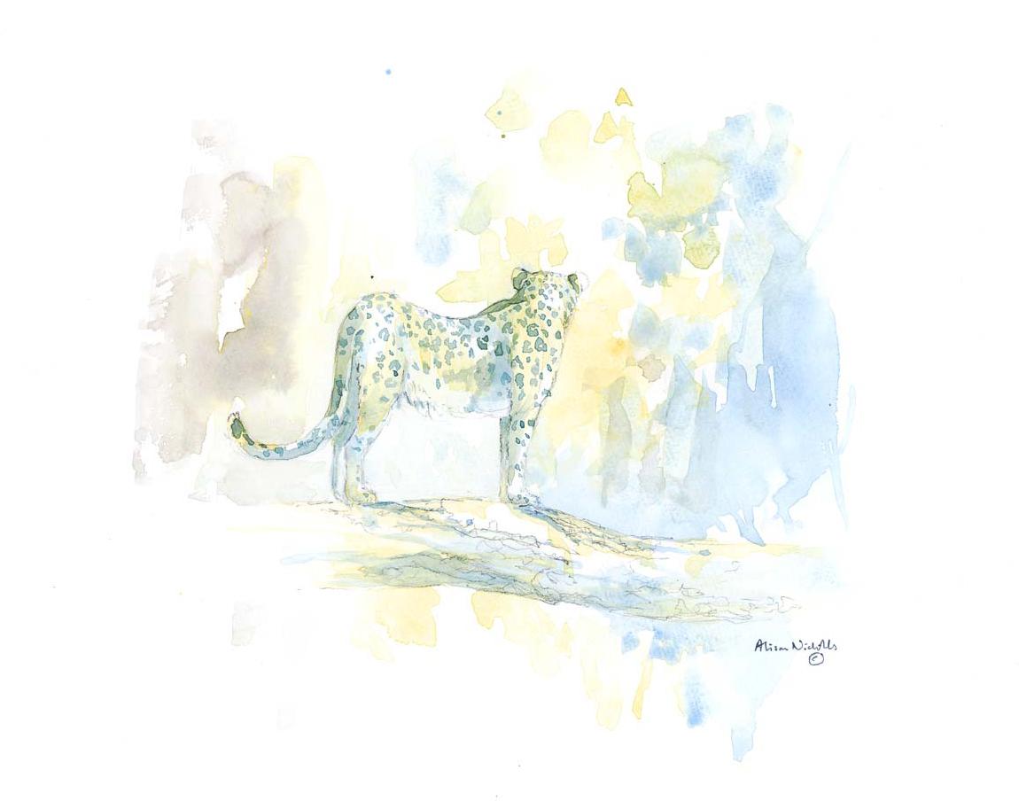 Leopard in Leadwood © Alison Nicholls