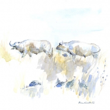 Buffalo and Guineafowl © Alison Nicholls