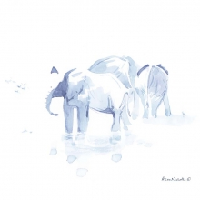 Elephants at Water III © Alison Nicholls