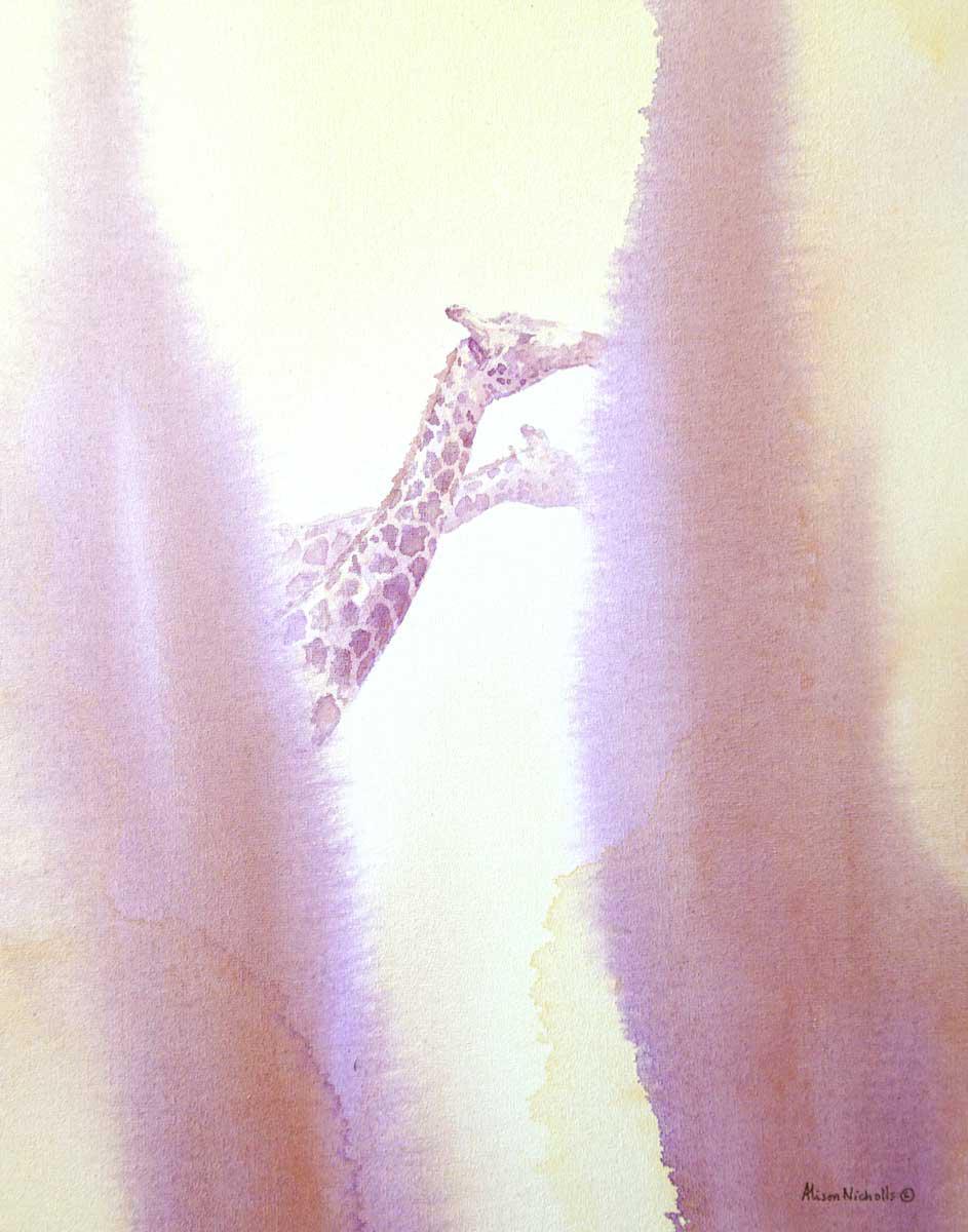 Giraffe Bulls Browsing © Alison Nicholls