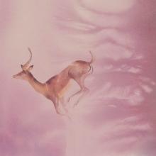 Flight © Alison Nicholls