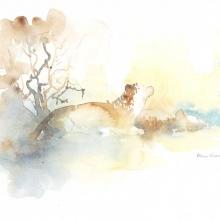 Spotted Hyenas Field Sketch by Alison Nicholls ©