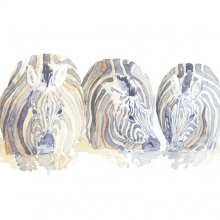 Zebra Drinking Field Sketch © Alison Nicholls