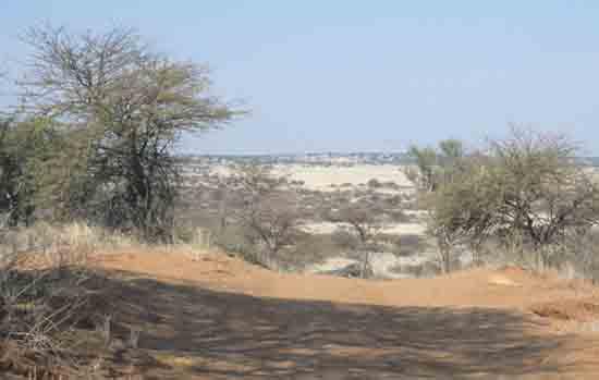 Mabuasehube, Botswana - photo by Alison Nicholls 2002