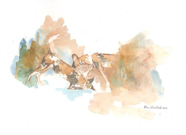 Playtime Field Sketch, watercolor by Alison Nicholls