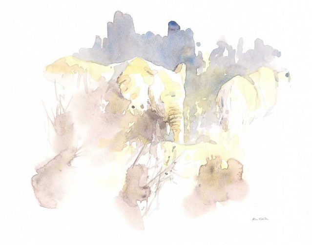 Elephants in Brown by Alison Nicholls