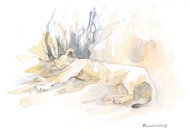 Lioness in Orange by Alison Nicholls