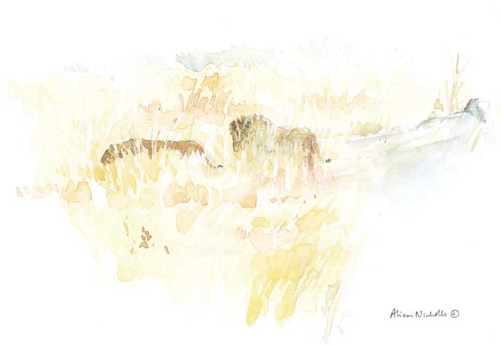 Mating Lions watercolor by Alison Nicholls