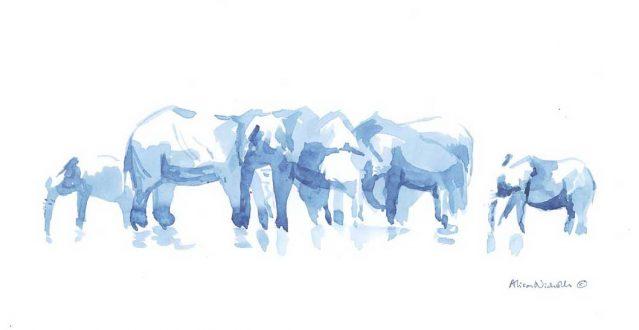 Elephants-at-Water-ANicholls